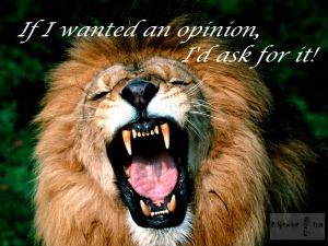 Angry-lion 2-8-15