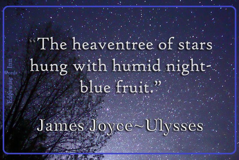 James Joyce Ulysses meme